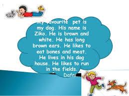 my favourite pet dafni 2 my favourite pet