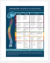 Chiropractic Subluxation Chart Neuro Fuse Poster