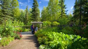 10 best hotels closest to alaska botanical garden in anchorage for 2019 expedia