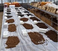 Soil Sampling To Assess Current Soil N Availability Purdue