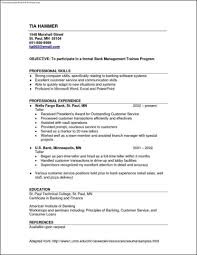 Most Common Resume Format Sevte