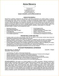 functional resume on linkedin cover letter resume examples functional resume on linkedin should i use a chronological or functional resume format accomplishments in resume