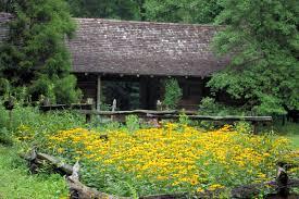 botanical garden bymarkfile fe30e02b b76a 4cb1 89b6 693dd3541041 jpg