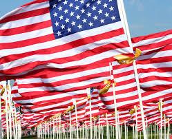 patriotic essay terra rubra lions club american heritage patriotic essay contest