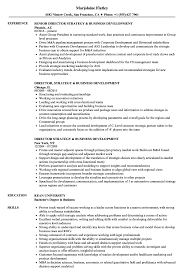 Cover Letter Director Strategy Business Development Resume