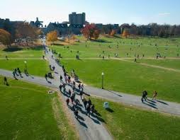 best fun spots in blacksburg images virginia  an oval shaped grassy stretch of land bordered by trees virginia tech s drillfield serves as the center of the blacksburg campus and remains one of the