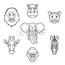 Animali Africani Vettoriali Illustrazioni E Clipart
