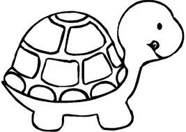 printable animals coloring pages printable pictures to color of animals free printable rainforest animal coloring pages