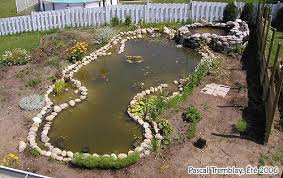 Small Picture Garden Pond Landscaping Design Ideas Build a Japanese Water Garden