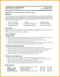 Resume Functional Summary Filling Out A Resume Functional Summary Magnificent Filling Out A Resume