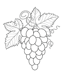 Printable Fruits And Vegetables Fruits And Vegetable Coloring Pages