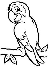 Small Picture picture Parrot Coloring Pages 95 On Free Colouring Pages with