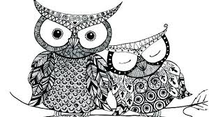 Owl Coloring Pages For Adults Coloring For Babies Amvame