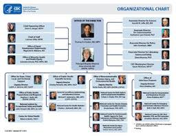 Cdc Organizational Chart Graphic Cdc Organizational Chart Organizational Chart