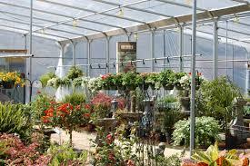 garden nurseries near me. Fashionable Design Ideas Nursery Garden Near Me Delightful Decoration Best Nurseries A