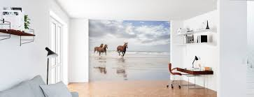 Zeeën Oceanen Hoogwaardig Fotobehang Photowall