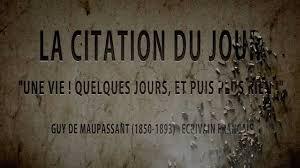Maupassantguy De Maupassant La Citation Du Jour Une Vie