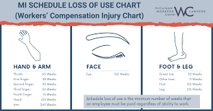 Workers Comp Pay Chart What Is Schedule Loss Of Use Workers Compensation Injury