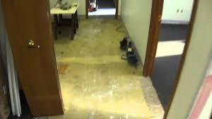 Harmonics Laminate Flooring Installation