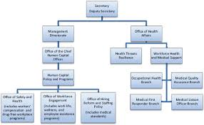 Free Dhs Organizational Chart Templates Download Free