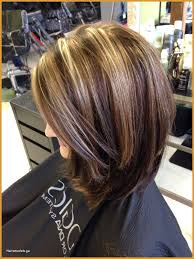 Hairstyles Short Layers On Long Hair Intriguing 20 Short Layered