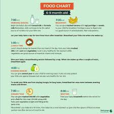6 To 9 Months Baby Food Chart 7 Month Baby Food Chart Plz Send