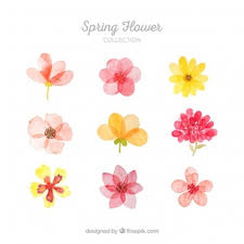 collection of spring flowers on flowers wall art decor vector with flower vectors photos and psd files free download