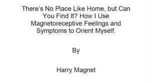 Harry Magnet Research Paper