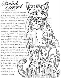 Leopard Coloring Pages Getcoloringpagescom