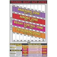 Aerobic Heart Rate Chart Heart Rate Chart Amazon Com