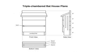 bat house plans pdf fresh 29 incredible bat house plans image ideas free canada ohio dnr