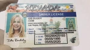 Nevada Premium Fake-id Idsbuddy com Fake Prices Id Buy ᐅ - Scannable