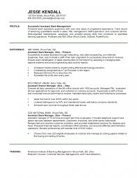 bank operations manager resume examples cipanewsletter cover letter assistant manager resume example resume example for