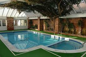 stylish ideas for the swimming pool at