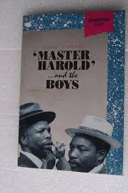 harold and the boys essay master harold and the boys essay