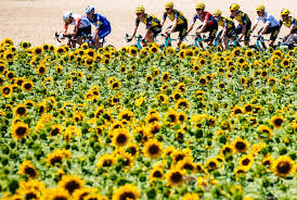Riders to Follow at Le Tour de France and La Course 2021