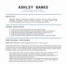 Word Document Resume Templates All About Letter Examples