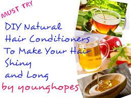 diy natural hair conditioners to make your hair shiny and long hubpages