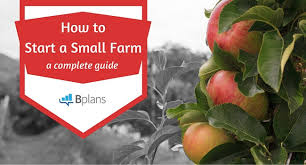 Farm Business Organizational Chart How To Start A Farm Your Complete Guide To Success