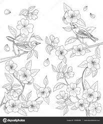 Kleurplaat Voor Volwassenen Met Vogels En Bloemen Stockvector 55