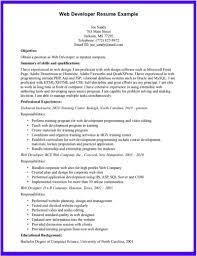 Salesforce Resume For Freshers Sample Salesforce Developer Resume