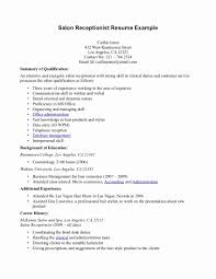 Hair Stylist Cover Letter Best Of Fashion Stylist Cover Letter