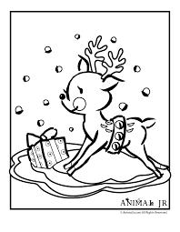 Baby Reindeer Coloring Page Animal Jr