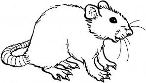 Small Picture Mouse and Rat is Smiling Coloring Pages Bulk Color