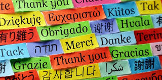 Image result for world with languages