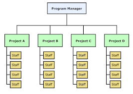 Project Team Structure Chart Organisational Issues