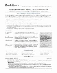 Basic Resume Template Free Adorable Free Printable Resume Templates Free Sample Organizational