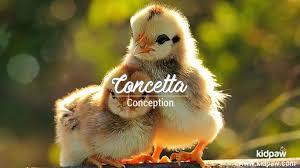 Concetta Name Pronunciation in [20 Different] Languages