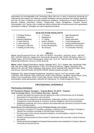 Classic Resume Template Beautiful It Executive Resume Sample