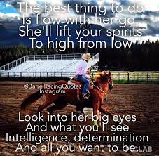 Barrel Racing Quotes Beauteous It Is My Horse That Carried Me Through Hell And Back To The Lord